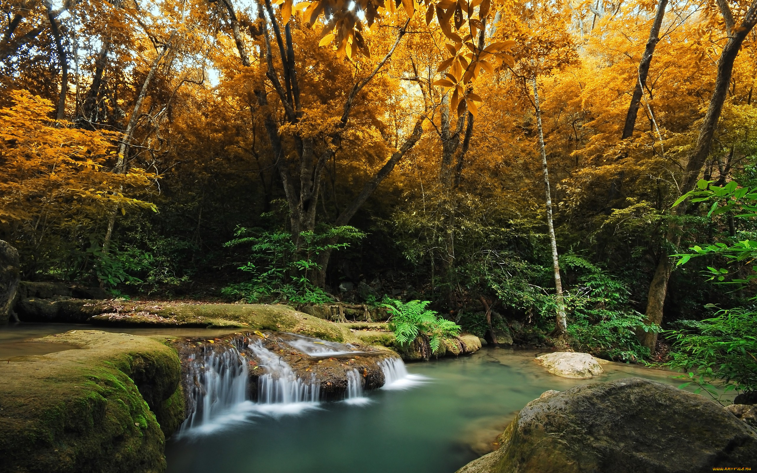 autumn, природа, реки, озера, река, осень, лес